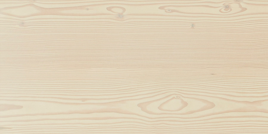 Close up detail of wood texture